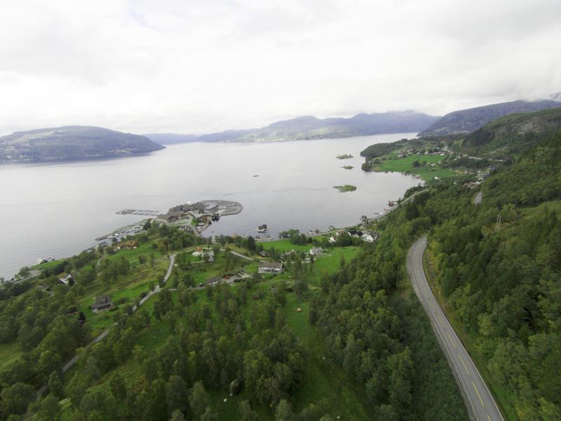 Riksveg 13 er den viktigaste transportåra for fersk laks frå lakseslakteriet Ryfisk i Hjelmeland. Foto: Morten Hetland/Hetland Media